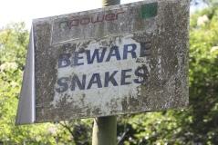 Beware snakes