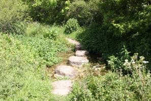 Nature reserve (2)
