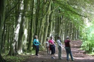 Valeway walkers
