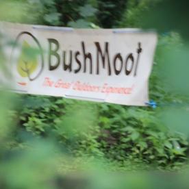 Bush Moot