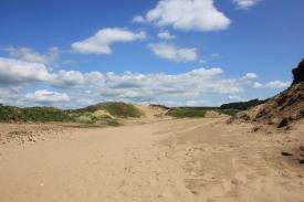 Dune system 4