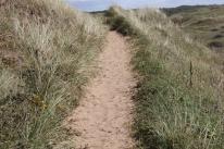 dune trek 2