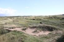 dune trek 3