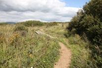 dune trek 6