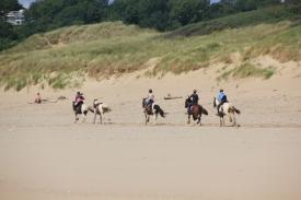 Pony treker 2