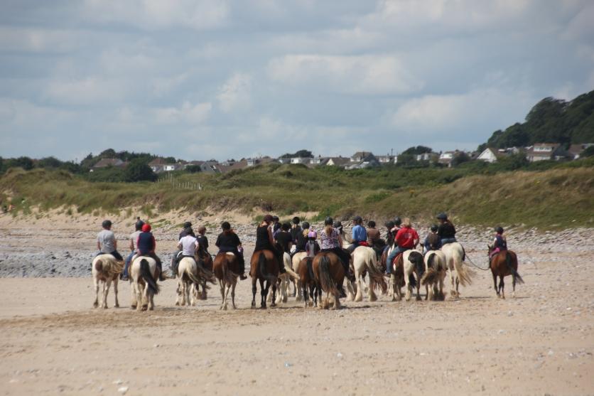 Pony trekers 3