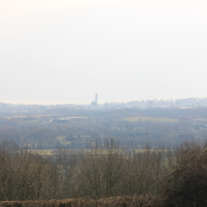 Views 1