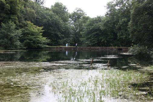 Mill Pond 3