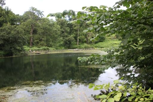Mill Pond 4