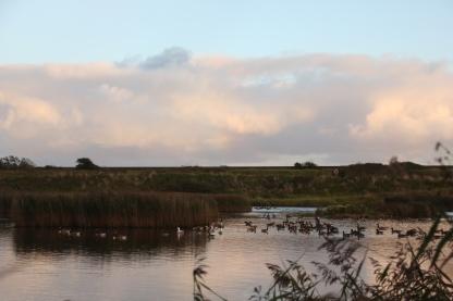 Twilight over the lake