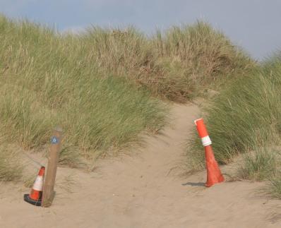 way to dunes