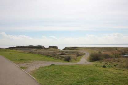 Path to the point