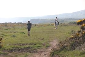 Heath & bridle paths