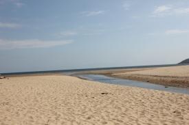 Oxwich Marsh Stream 1