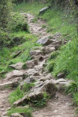 Rough terrain2