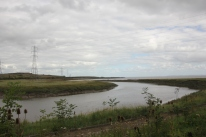 estuary-river-3