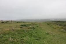 flat-heathland