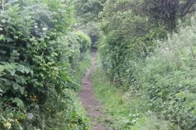 hill-path