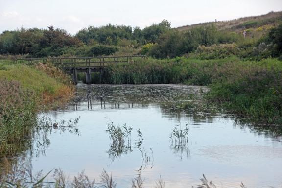canal-bridges