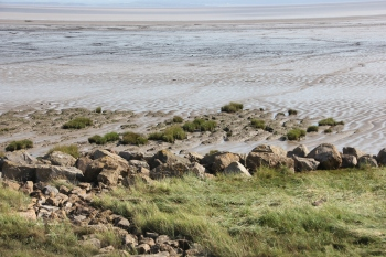 mudflats-and-runnels