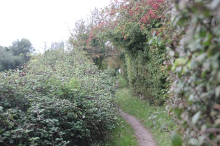 path-to-peterstone