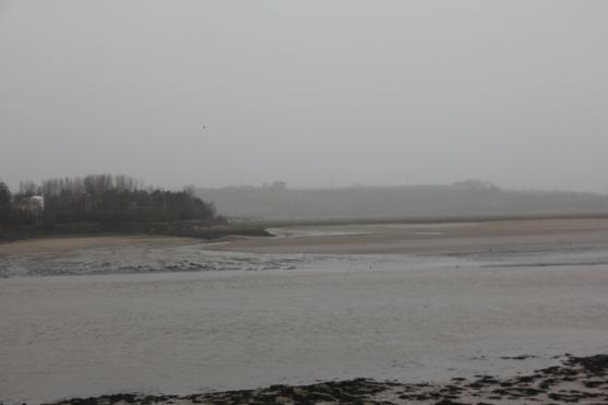 estuary-1