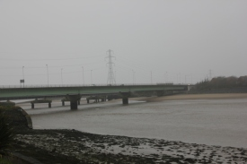 estuary-2