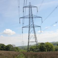 Alien pylons