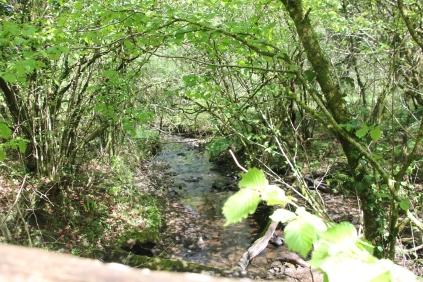 River Nant Llest-Wen from bridge
