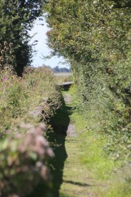 Path by Seawall