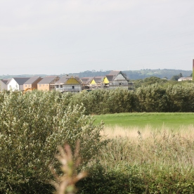 Chimney, Houses and Golf