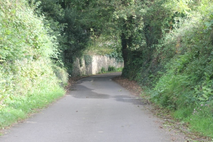 Lane to Llanrhidian