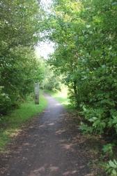 Path start