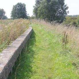 Seawall path