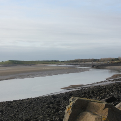 mudflats 2