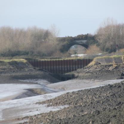 mudflats 3