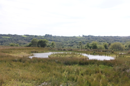 View from Scrapes Field hide 2