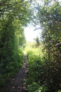 Path to Embankment