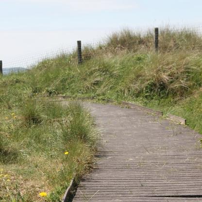 Boardwalk to dunes