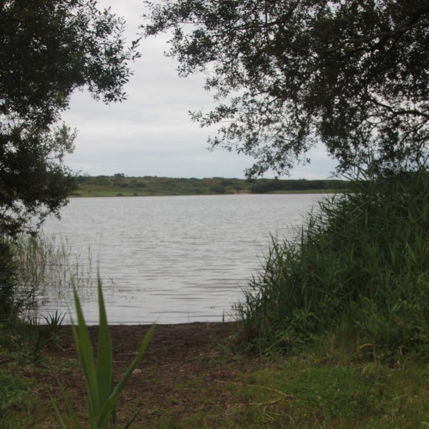 Passage to lake