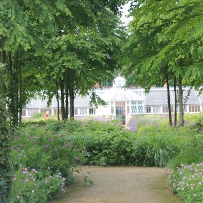 Katsuru garden