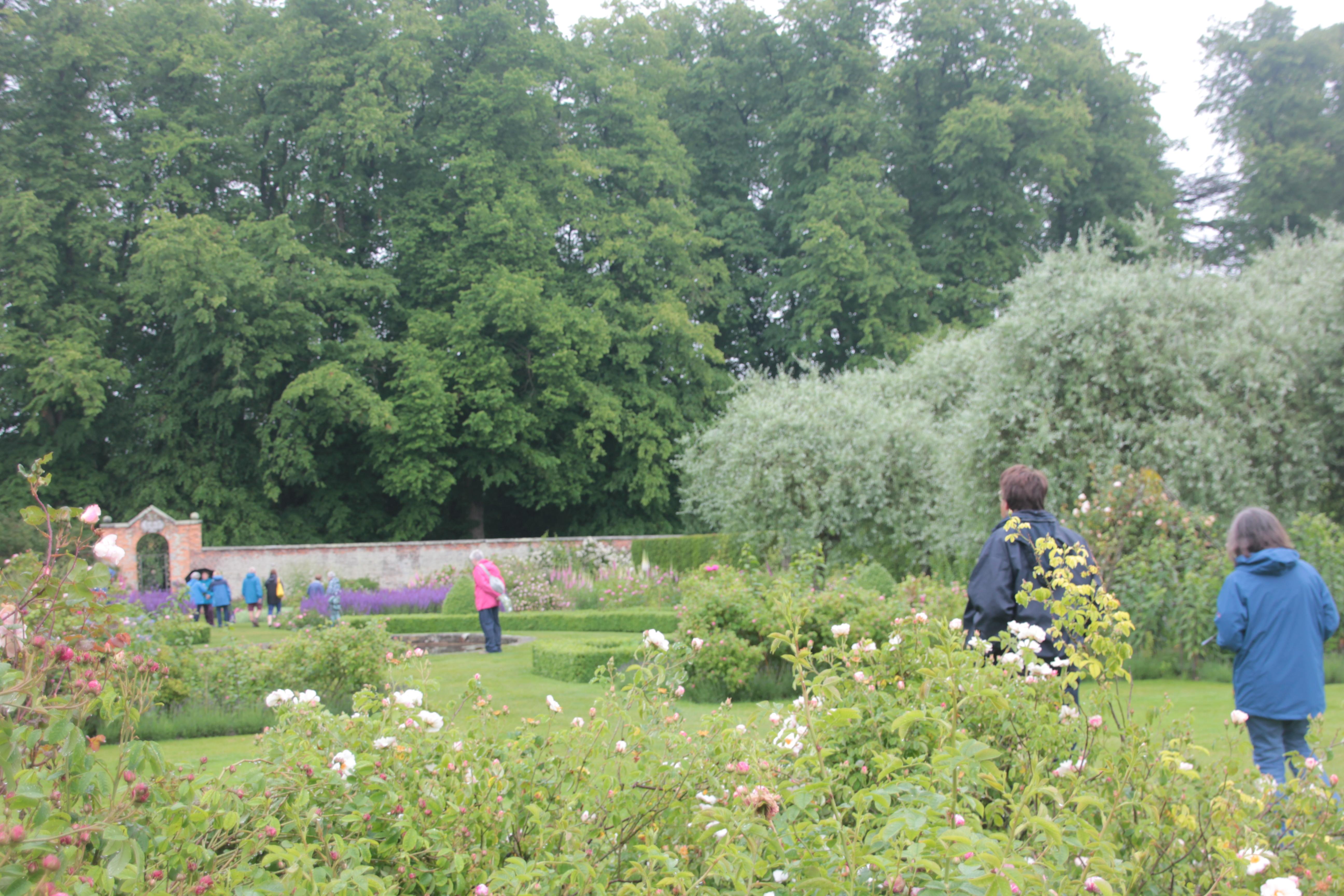 Cecelia's Garden